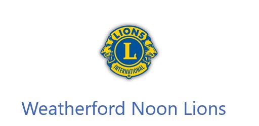 Lion Sponsor